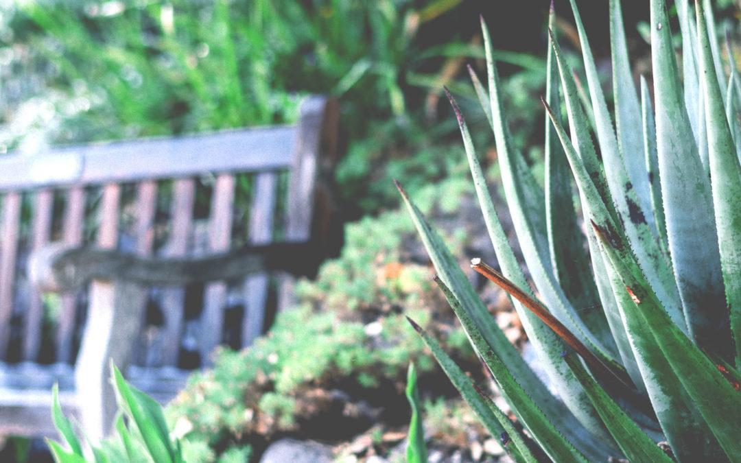 A családi kertekről
